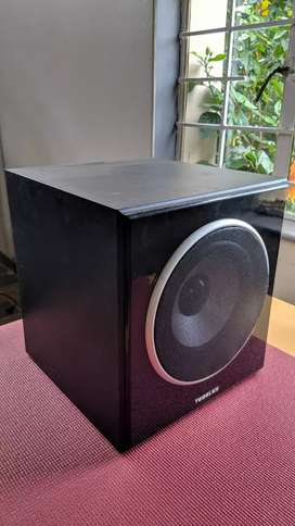 Big Tedelex 8-inch subwoofer with gloss panel.