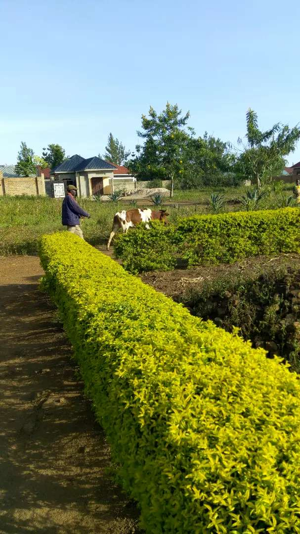 Precious land for residential and business along Iganga Bugiri highway 0