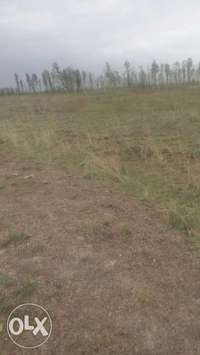 Plot for sale in Kamulu 0
