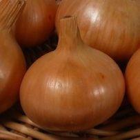 Семена лука Халцедон