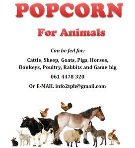 POPCORN FEED FOR ANIMALS