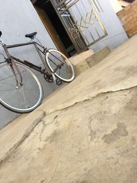 Fixie/road bike