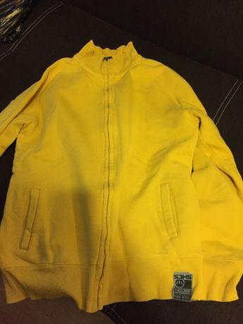 Bluza męska firmy HAUSE rozmiar XL Gostynin - image 1