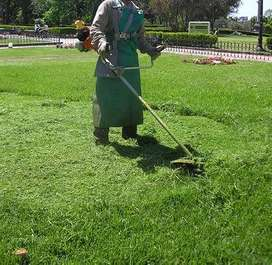 DOES YOUR LAWN REQUIRE A TRIM?