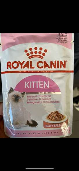 Royal Canin Kitten Wet food pouches for sale