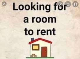 Urgently looking for a flat rent