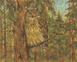 SOWY - ZWIERZĘTA reprint XIX w. grafik na ścianę