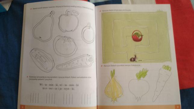 Zestaw książek do Zerówki Kolorowy Start z Plusem Toruń - image 7