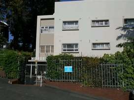Spacious 1.5 bedroom apartment in the heart of Musgrave