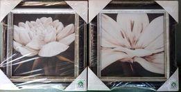 Reprodukcje -Kwiaty / 18x18