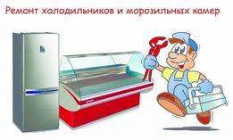 Быстро доступно на дому ремонт холодильников мороз.торг.витрин
