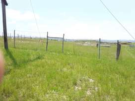 Double plot land of 50 meter squared