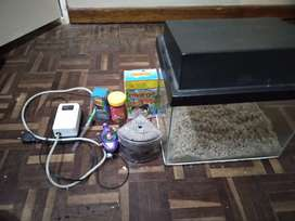 Fish tank and other accessories