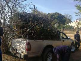 Garden refuse.,house junk removal R250