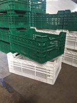 Продам пластиковые ящики