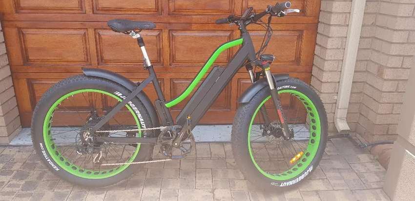 Electric Bicycle 0