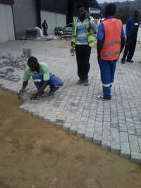 Image of Paving expect
