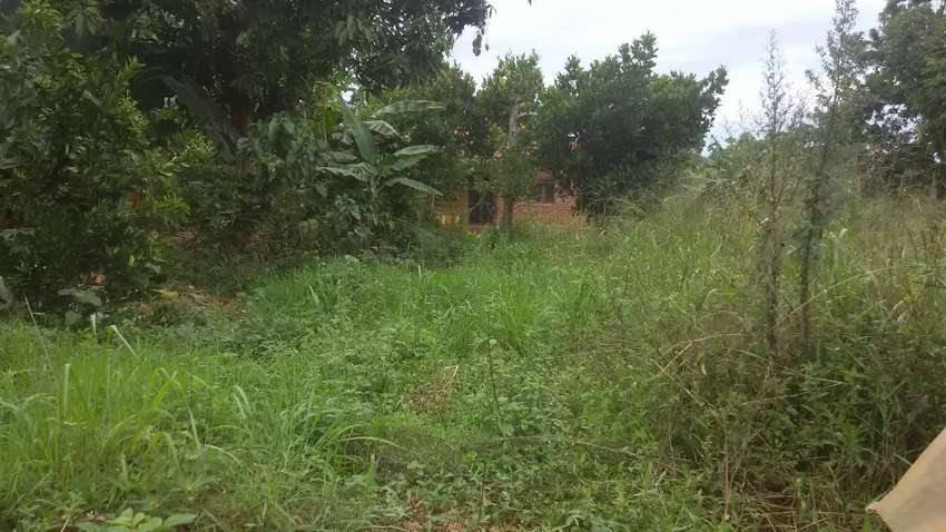 Plot on sale located at nsaggu nakawuka road with it's land title 0