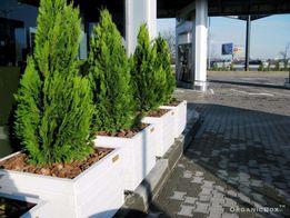 Деревянный ящик для туи, ящики для цветов и деревьев, ограда для клумб