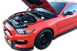 Siłowniki do maski Ford Mustang 2015 +