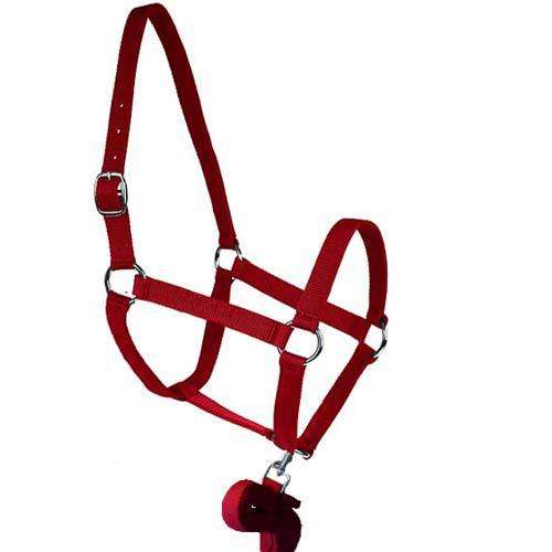 EQUESTA HALTER AND LEAD SET - RED