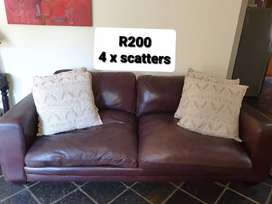Lounge Scatter Cushions