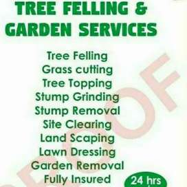 Tree felling and garden services