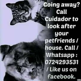 Cuidador - House and pet sitting
