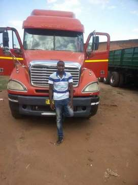 Looking for a job as truck driver