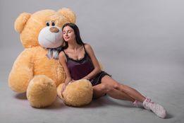Плюшевый медведь, плюшевый мишка, мягкая игрушка, большой медведь