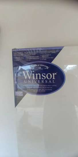Winsor and Newton art canvas