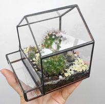 Домик флорариум мох суккуленты кактус визитница мини-сад кашпо визитка