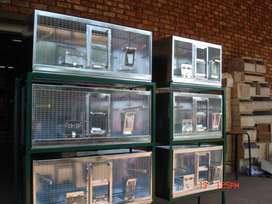 BIRD CAGES from  90 cm  x  38 . Intensive Bird Breeding like Show Budg