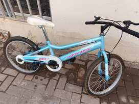 Axis 20inch bicycle