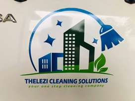 Thelezi Cleaning Solutions