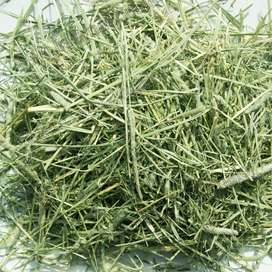 Top quality Timothy and Alfalfa hay