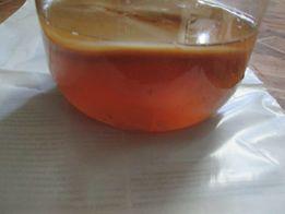 Комбучча — Чайный гриб