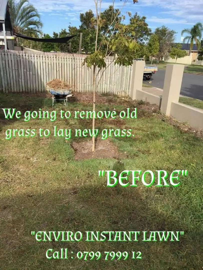 QUALITY ROLL-ON GRASS, LAWN, TURF + TOP SOIL, COMPOST & LAWN DRESSING 0