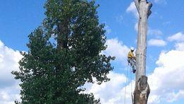Обрізка, зрізання дерев. Спилювання аварійних дерев різної складності.