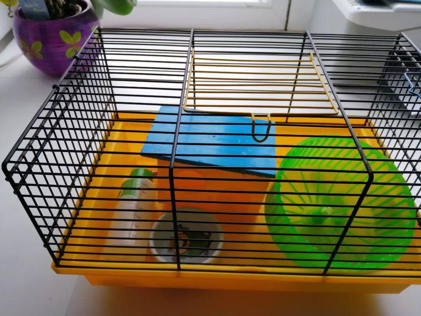 Klec pro myš či krecka 0