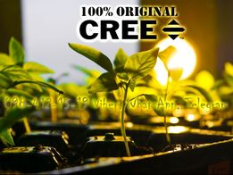 CREE CXA2530 ФИТОЛАМПА LED фито лампа фитосветильник гроубокс Одесса