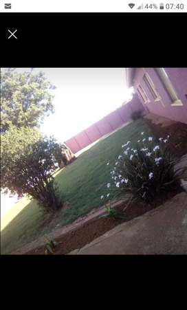 Room to rent in Randfontein