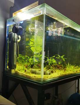 6ft Fish Tank with Steel Stand (400l)
