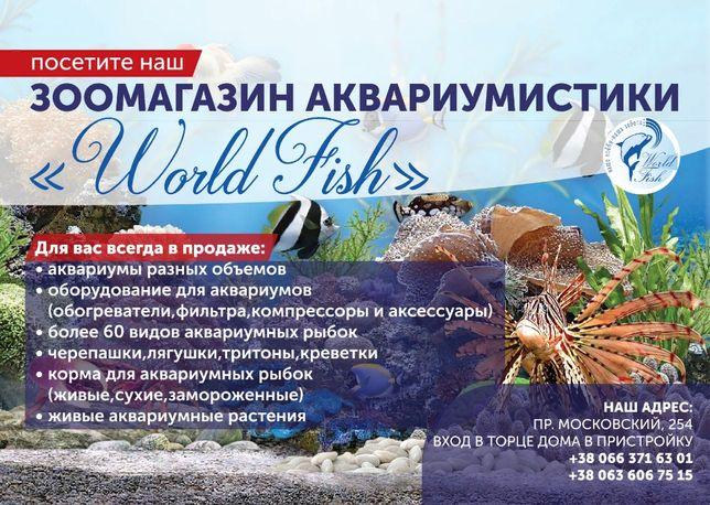 аквариумные рыбки, растения, оборудование,зоомагазин аквариумистики Харьков - изображение 1