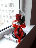 Роза в колбе, в стекле,25*15 см. Коробка,гравировка, доставка. Одесса!