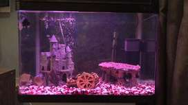 60 Litre Warm Water Tropical Fish Tank