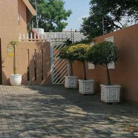 Newly Renovated Garden Flat Immediately Available