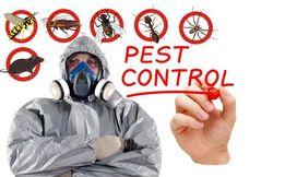 Уничтожение тараканов, мух, клещей, клопов, мышей.