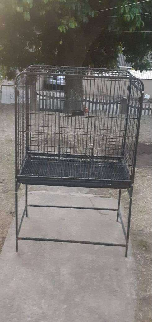 Parrot cage for sale 0