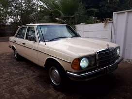 Beautiful Classic W123, 300d - 1977